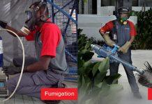 Dedetização/ fumigação